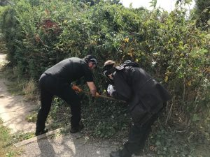Police make County Line arrests in Bury St Edmunds as part of national week of action