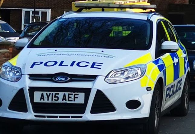Three people arrested following the theft of a car and shoplifting