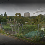 Allotments damaged over night in Bury St Edmunds
